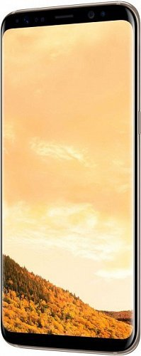 Смартфон Samsung Galaxy S8 G950 64GB Gold